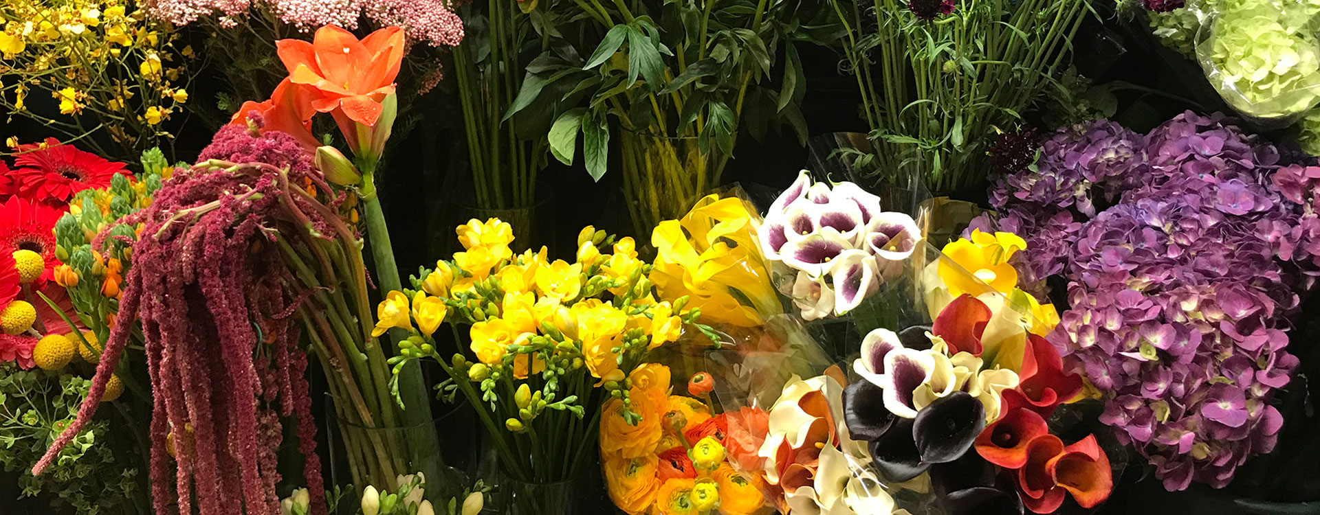 Blooming Couture Flowers Header Blooming Couture Flowers New York